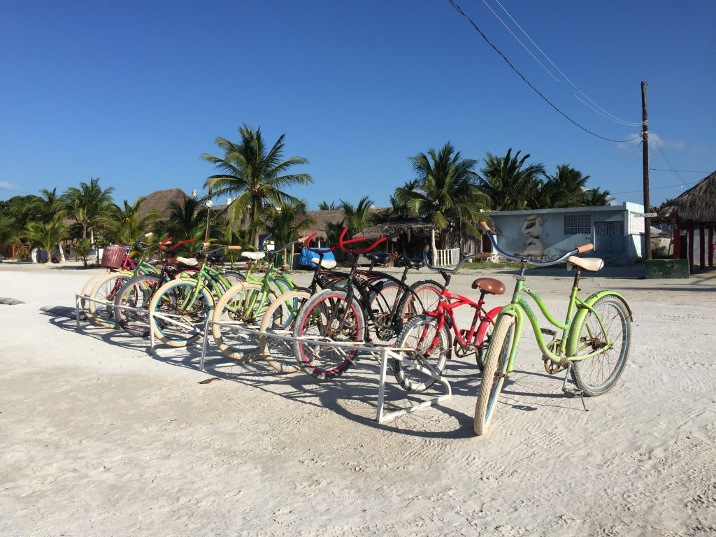Bike rentals are in abundance
